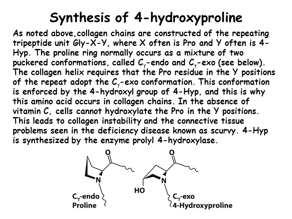 Synthesis of 4-hydroxyproline