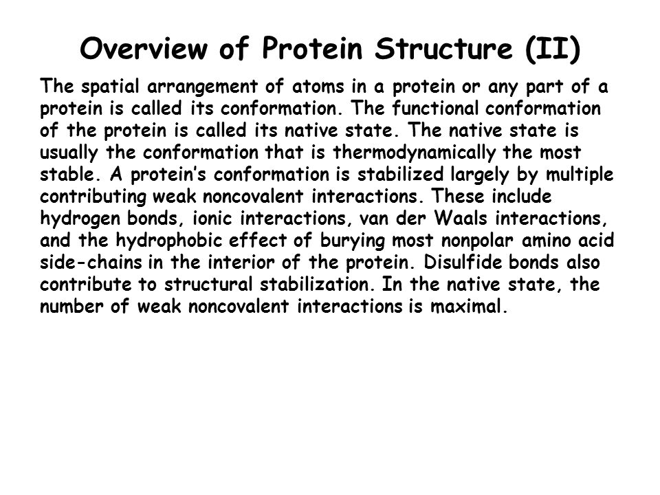 Overview of Protein Structure (II)