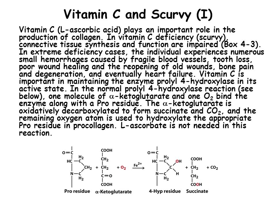 Vitamin C and Scurvy (I)