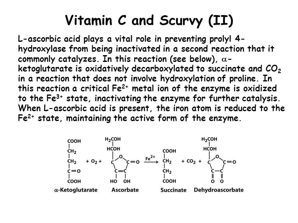 Vitamin C and Scurvy (II)