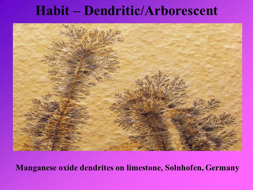 Habit – Dendritic/Arborescent