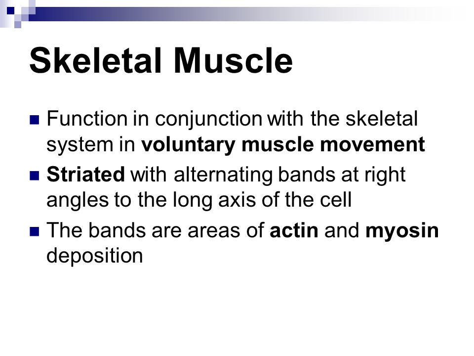 Skeletal Muscle Function in conjunction with the skeletal system in voluntary muscle movement.