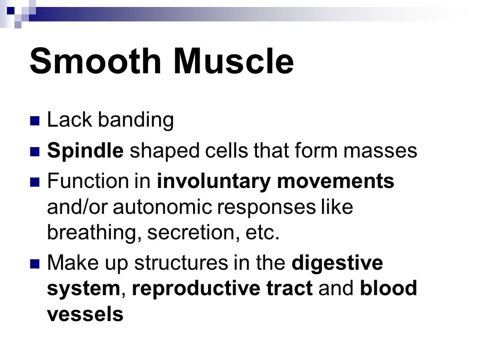 Smooth Muscle Lack banding Spindle shaped cells that form masses