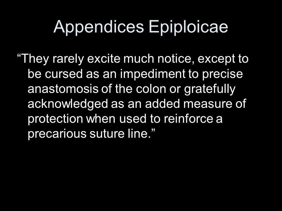 Appendices Epiploicae