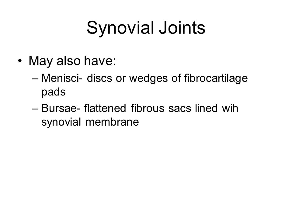 Synovial Joints May also have: