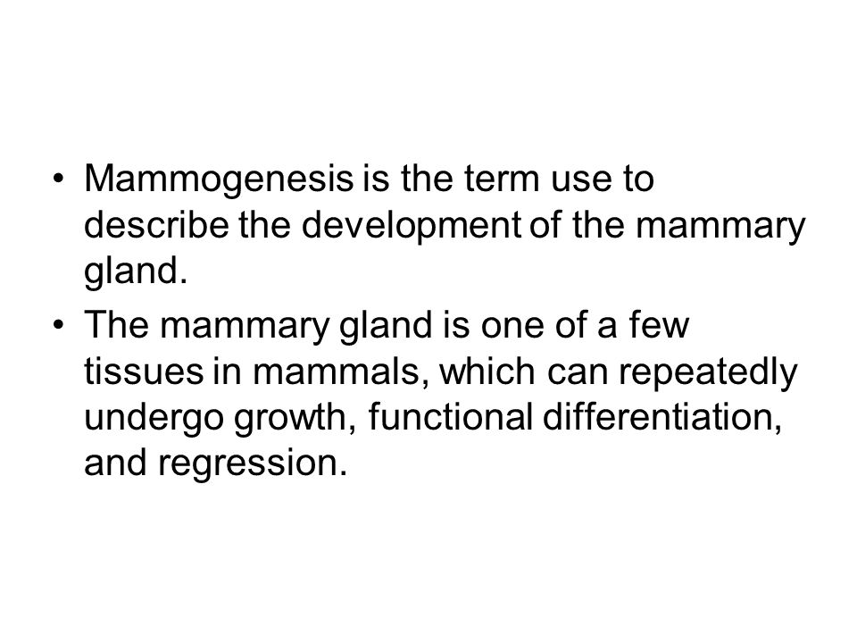 Mammogenesis is the term use to describe the development of the mammary gland.