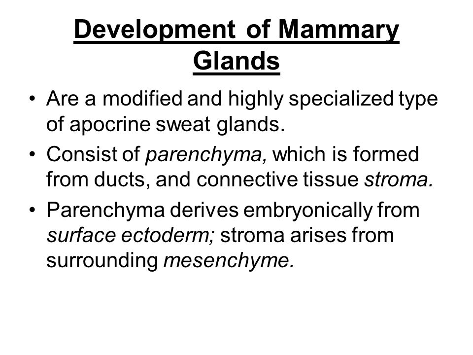 Development of Mammary Glands