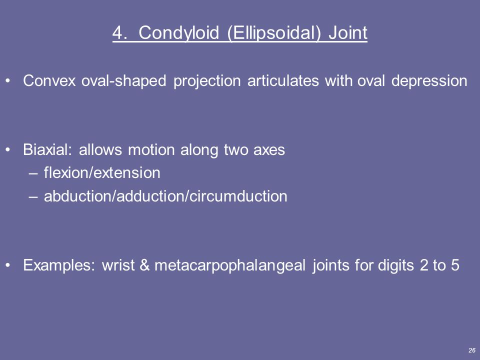 4. Condyloid (Ellipsoidal) Joint