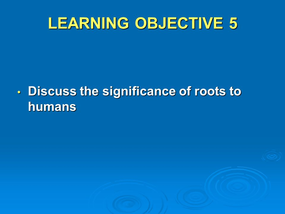 LEARNING OBJECTIVE 5 Discuss the significance of roots to humans
