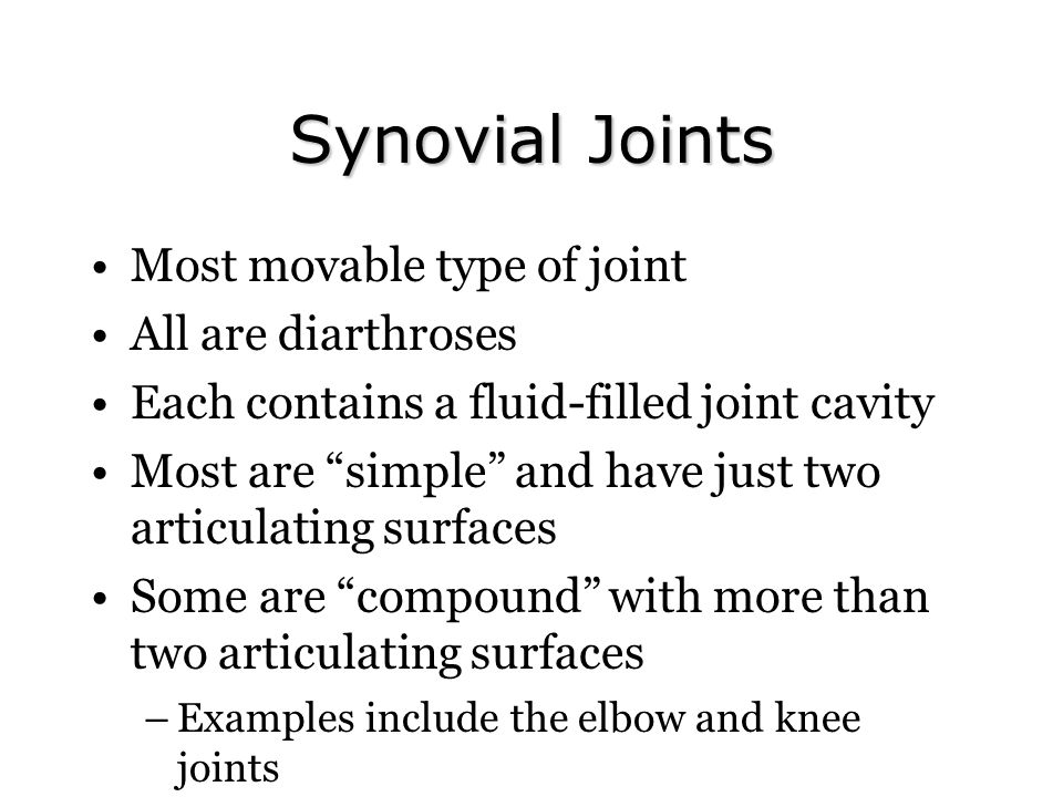 Synovial Joints Most movable type of joint All are diarthroses