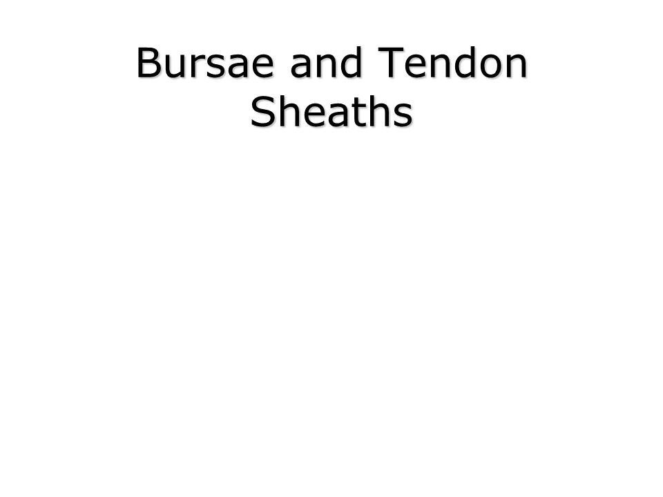 Bursae and Tendon Sheaths