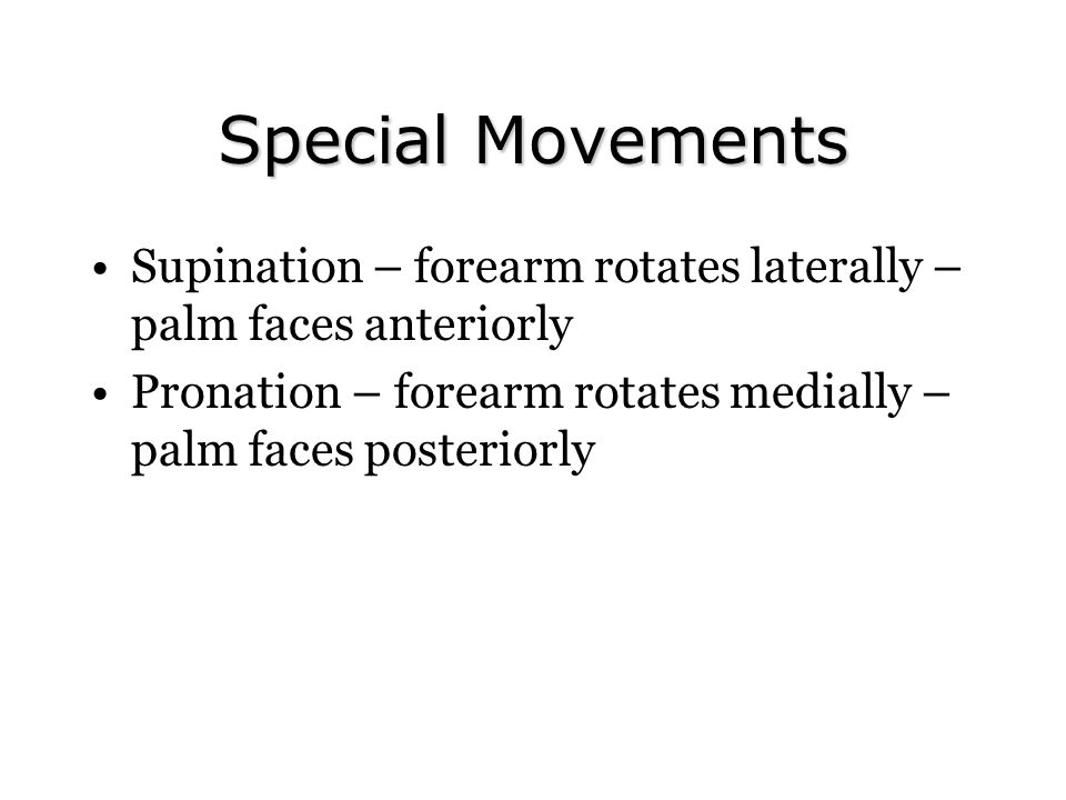 Special Movements Supination – forearm rotates laterally – palm faces anteriorly.