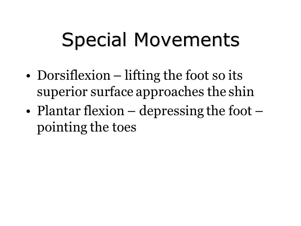 Special Movements Dorsiflexion – lifting the foot so its superior surface approaches the shin.