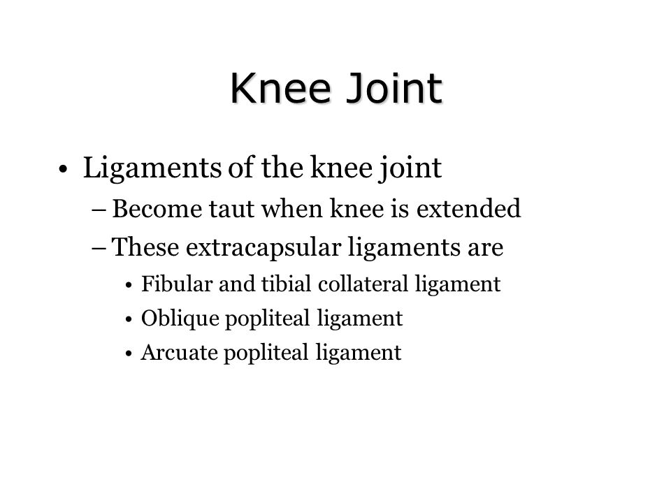 Knee Joint Ligaments of the knee joint