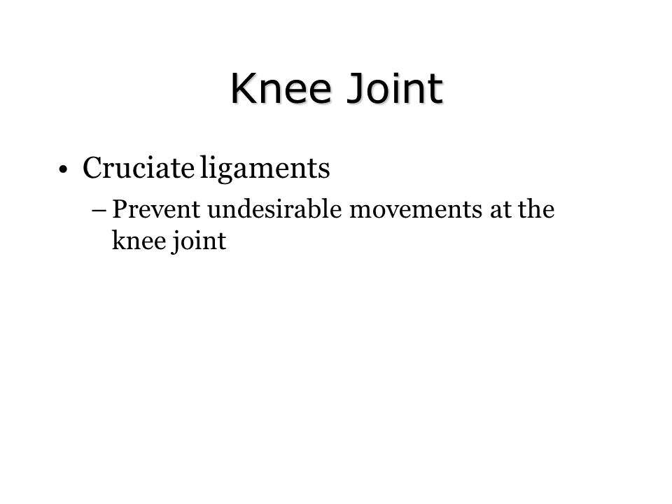 Knee Joint Cruciate ligaments