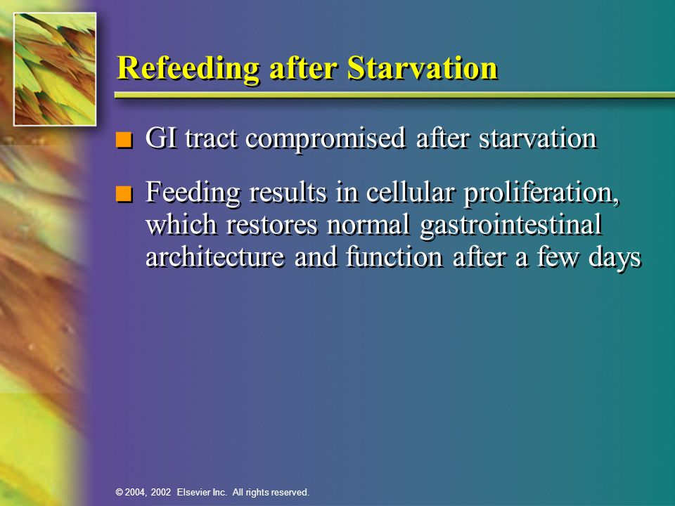 Refeeding after Starvation