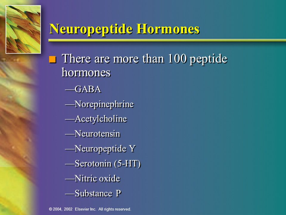 Neuropeptide Hormones