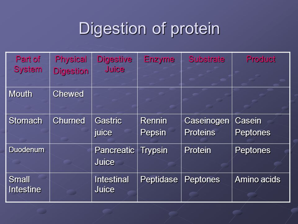 Digestion of protein Part of System Physical Digestion Digestive Juice