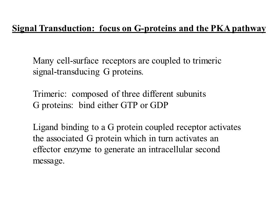 Signal Transduction: focus on G-proteins and the PKA pathway