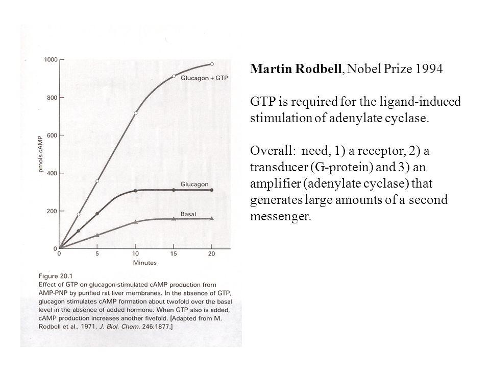 Martin Rodbell, Nobel Prize 1994