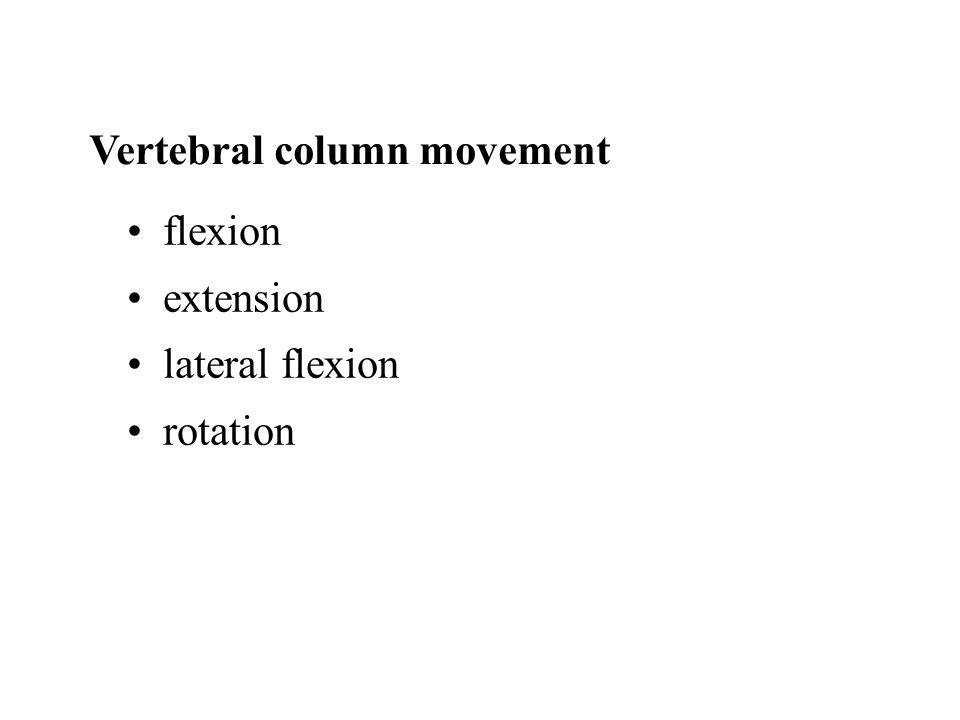 Vertebral column movement