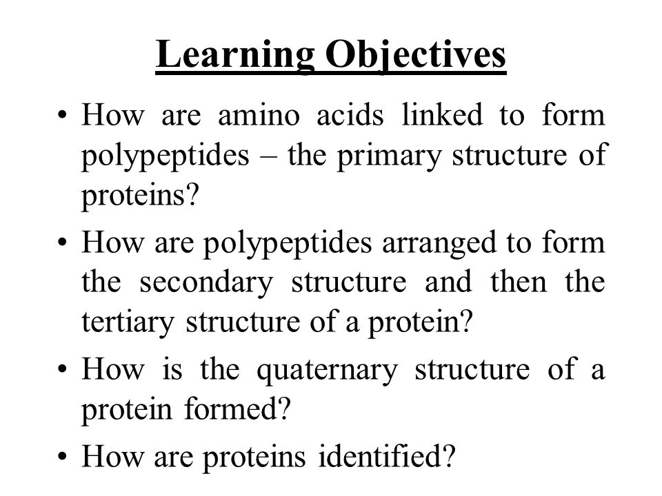 Learning Objectives How are amino acids linked to form polypeptides – the primary structure of proteins