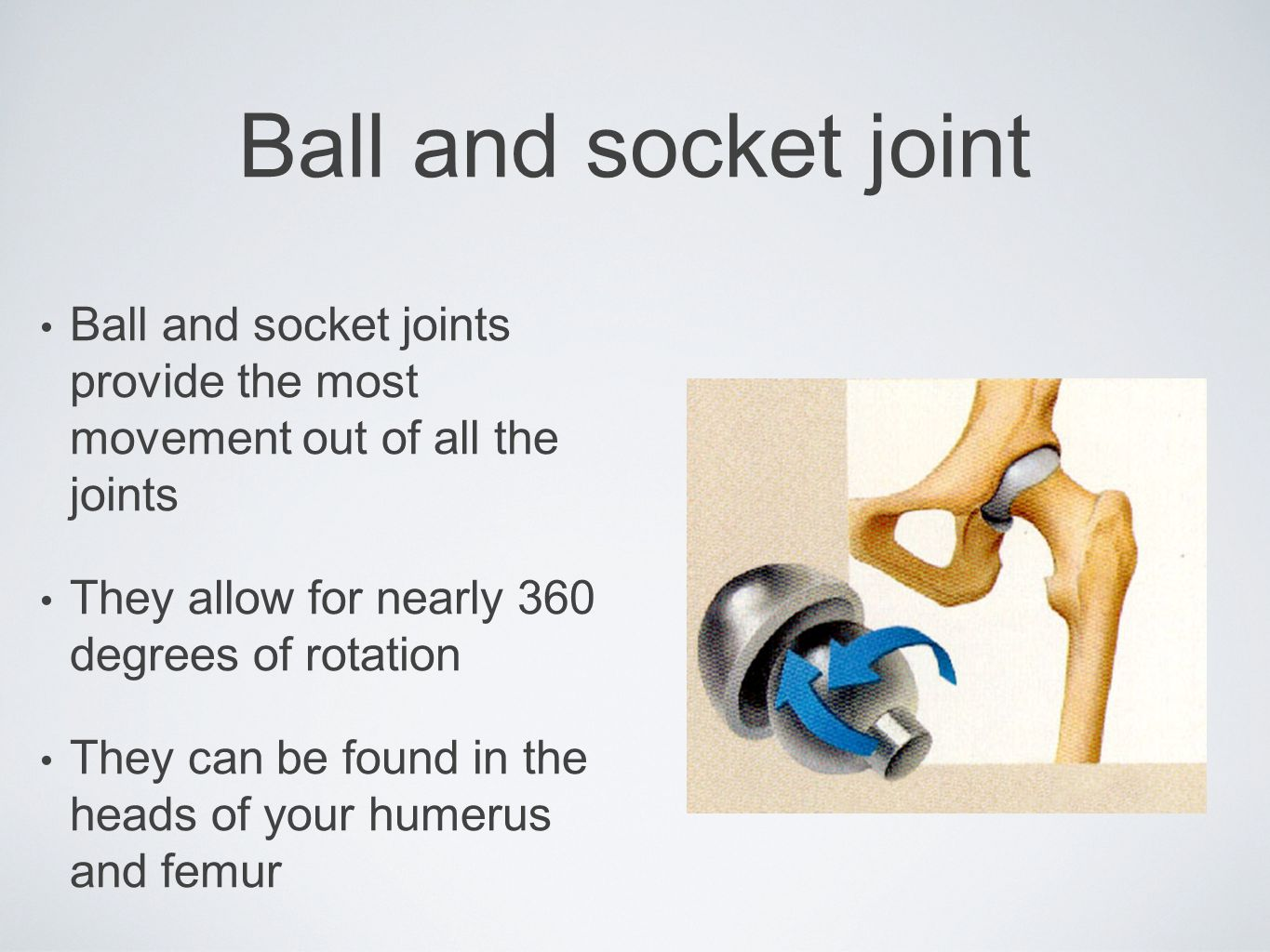 Ball and socket joint Ball and socket joints provide the most movement out of all the joints. They allow for nearly 360 degrees of rotation.