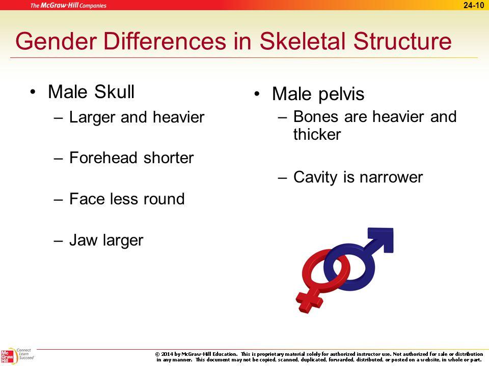 Gender Differences in Skeletal Structure