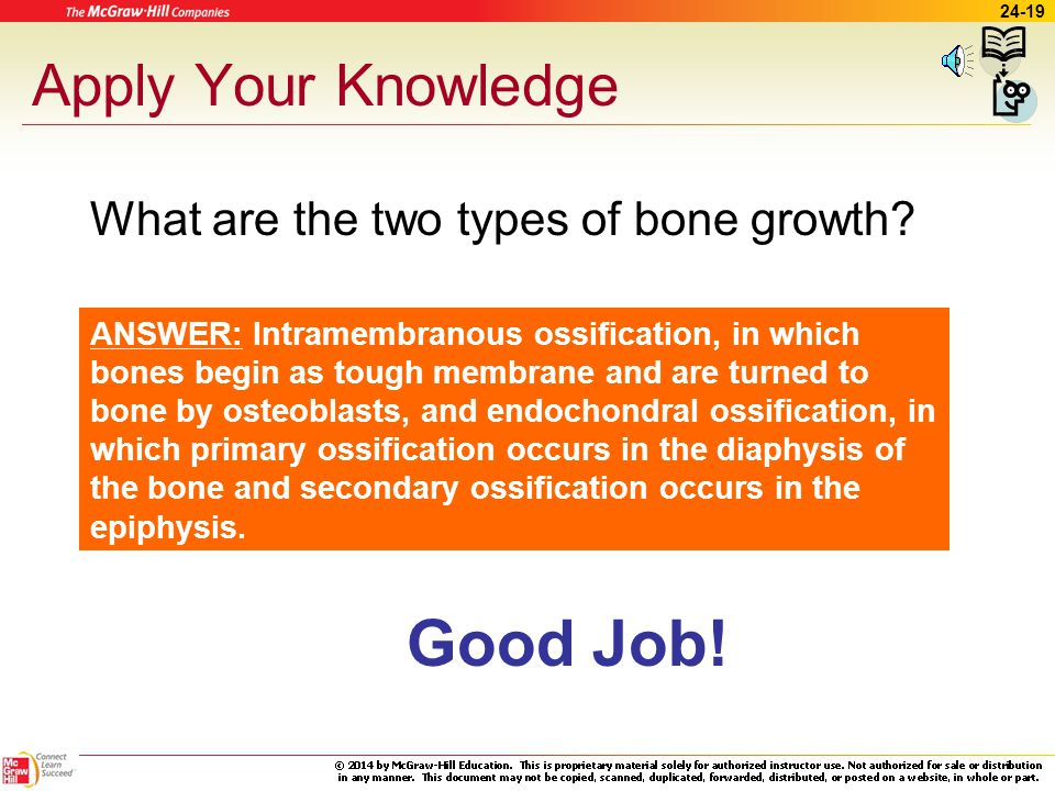 Good Job! Apply Your Knowledge What are the two types of bone growth