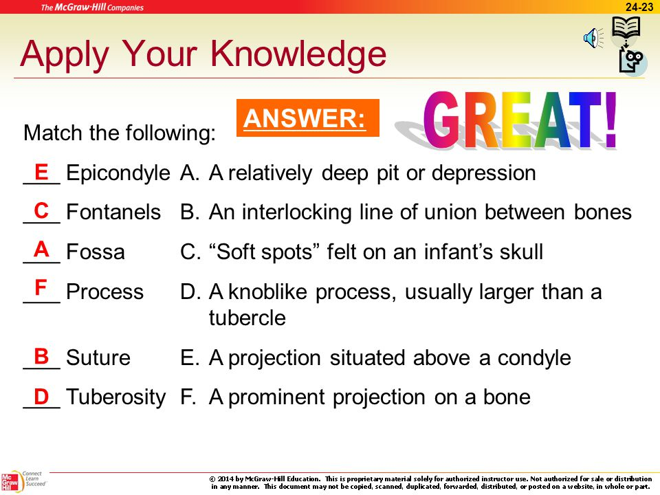 Apply Your Knowledge GREAT! ANSWER: Match the following: