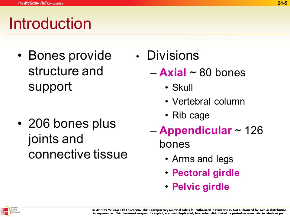Introduction Bones provide structure and support
