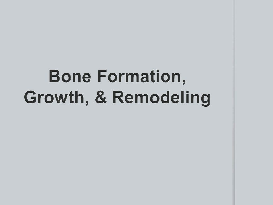 Bone Formation, Growth, & Remodeling