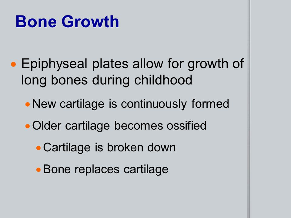 Bone Growth Epiphyseal plates allow for growth of long bones during childhood. New cartilage is continuously formed.