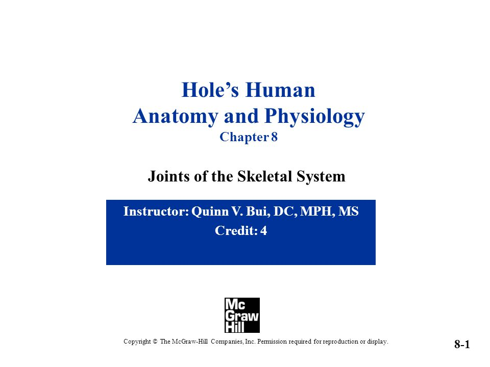 Anatomy and Physiology Instructor: Quinn V. Bui, DC, MPH, MS