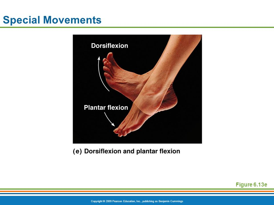 Special Movements Figure 6.13e