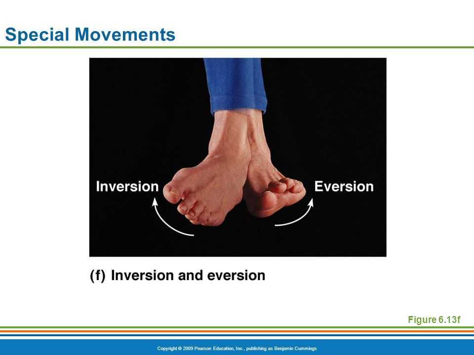 Special Movements Figure 6.13f