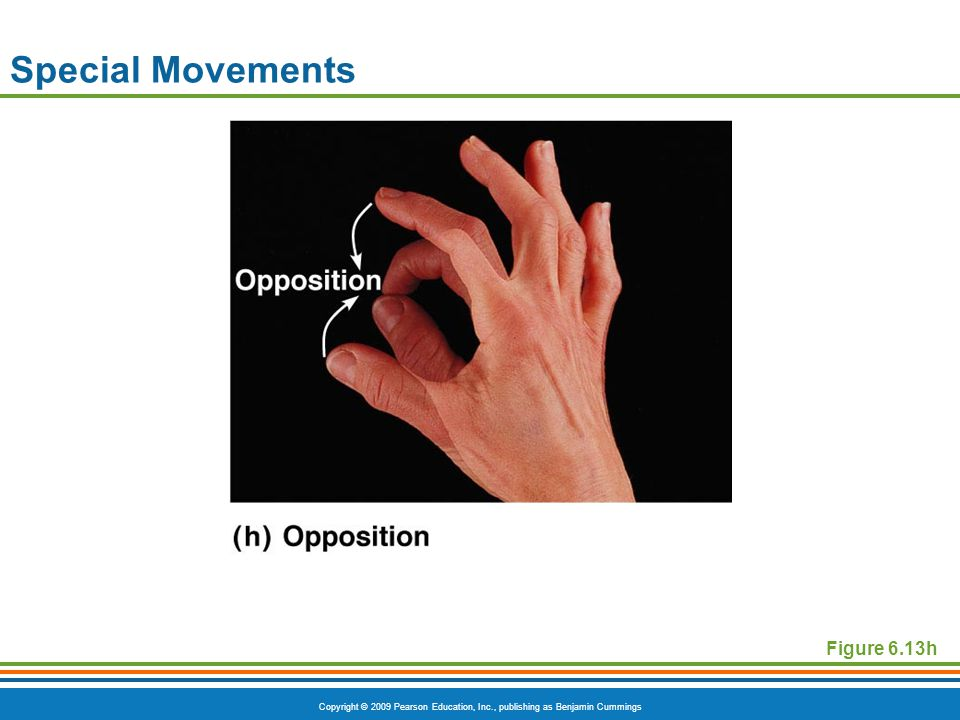Special Movements Figure 6.13h