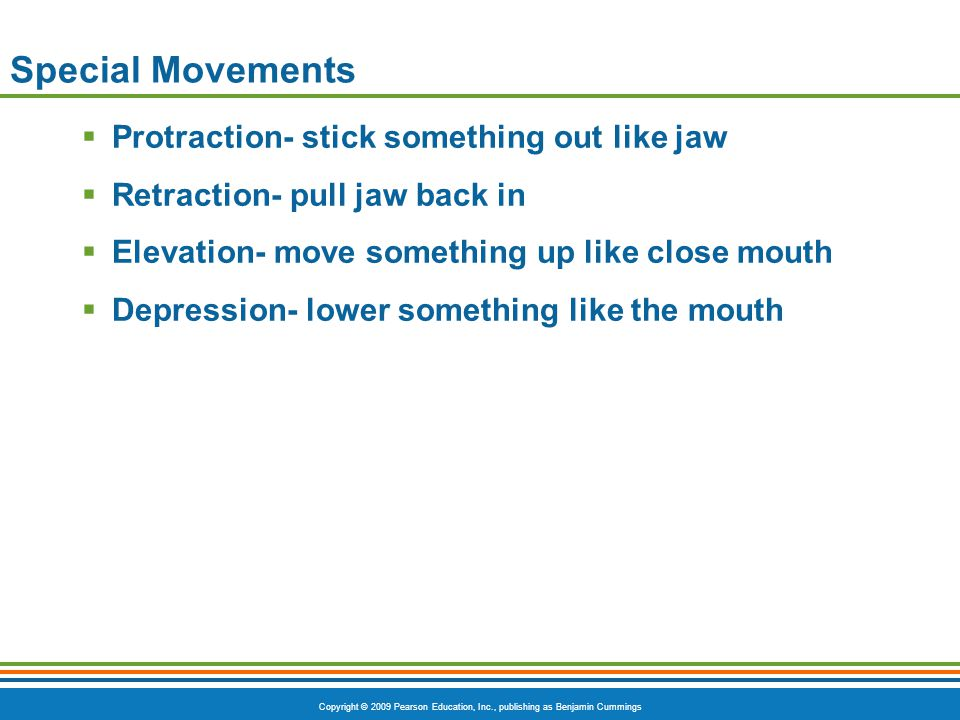 Special Movements Protraction- stick something out like jaw