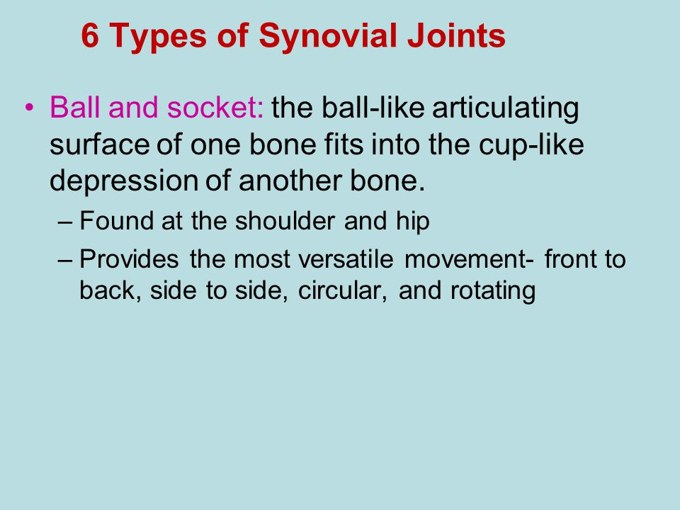 6 Types of Synovial Joints