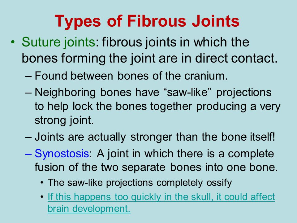 Types of Fibrous Joints