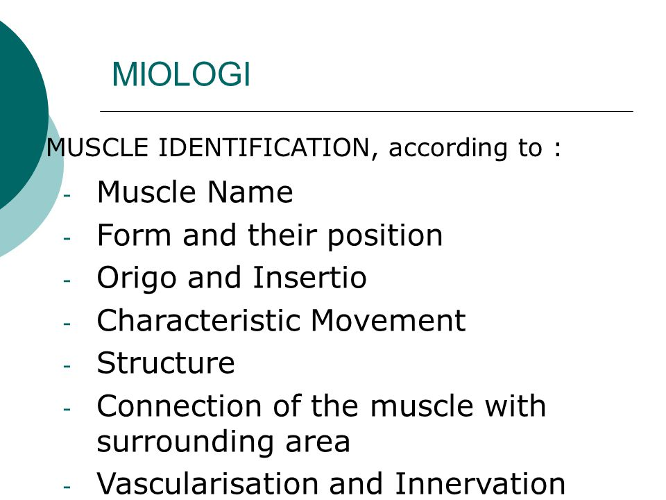 MIOLOGI Muscle Name Form and their position Origo and Insertio