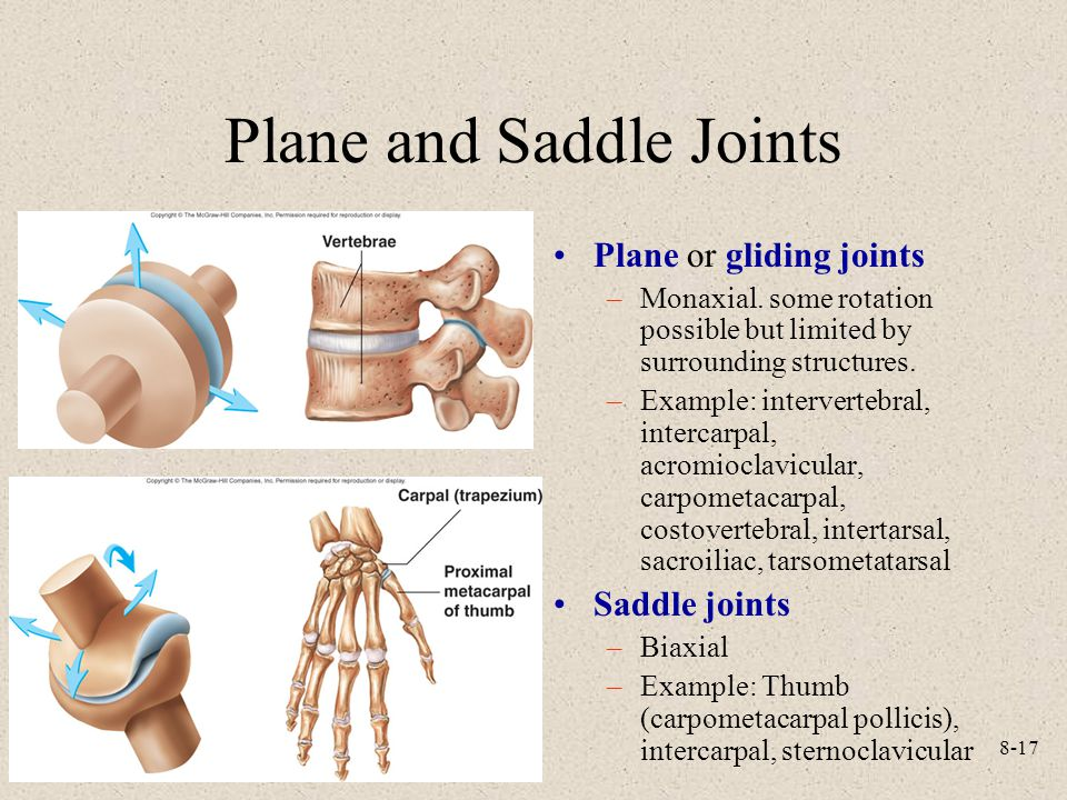 Plane and Saddle Joints