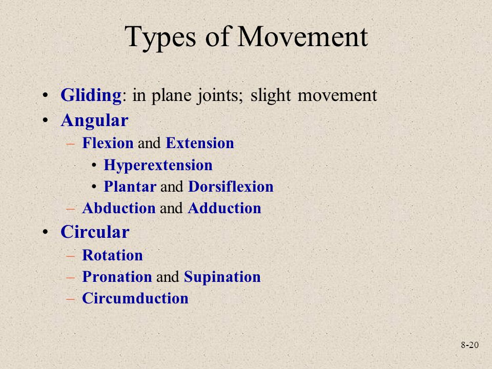 Types of Movement Gliding: in plane joints; slight movement Angular