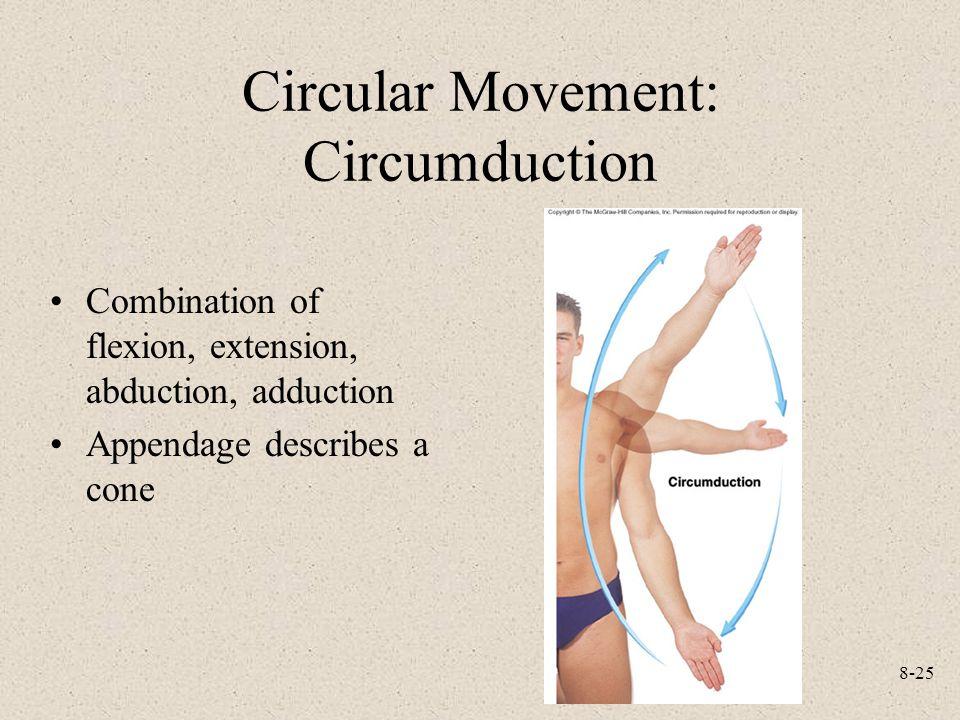 Circular Movement: Circumduction