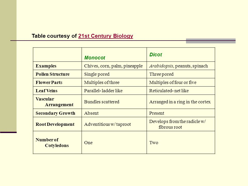 Table courtesy of 21st Century Biology