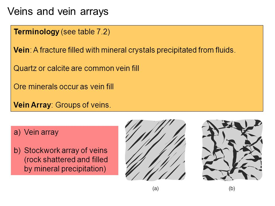 Veins and vein arrays Terminology (see table 7.2)