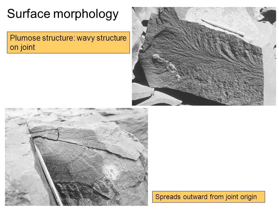 Surface morphology Plumose structure: wavy structure on joint