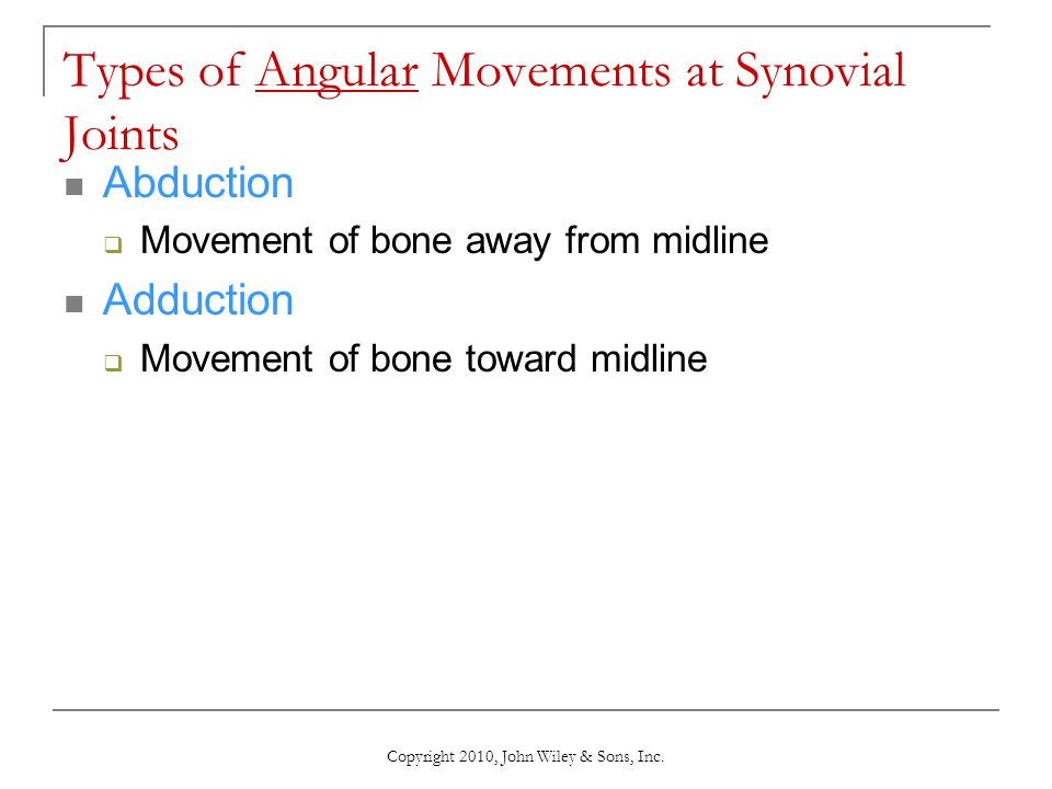 Types of Angular Movements at Synovial Joints