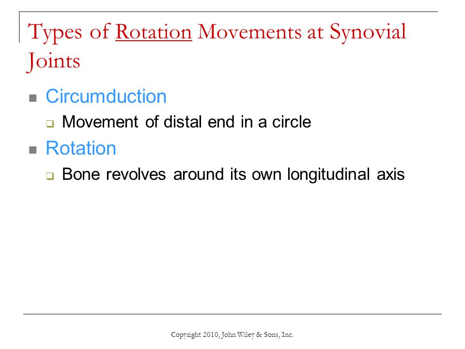 Types of Rotation Movements at Synovial Joints