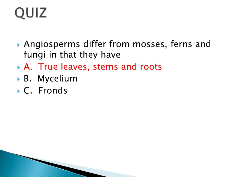 QUIZ Angiosperms differ from mosses, ferns and fungi in that they have